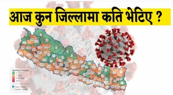 आज कुन जिल्लामा कति संक्रमित भेटिए ? हेर्नुहोस् जिल्लागत विवरण